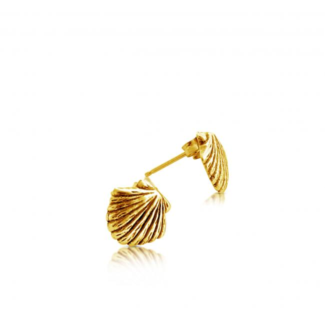 Gold plated earrings Sea Shell