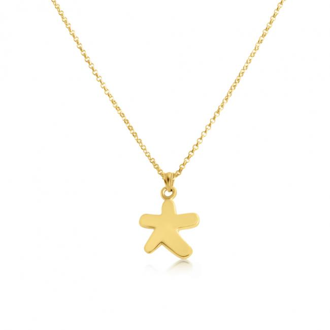 Gold plated necklace Star