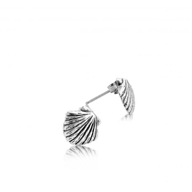 925 sterling silver earrings Sea Shell